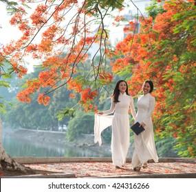 Vietnamese girls wear Ao dai near blooming flamboyant flowers