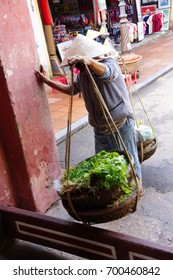 Vietnamese  woman carrying fresh vegetables and baskets,   Hoi An, Vietnam