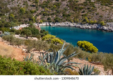 View from above of beautiful small bay with calm turquoise water surrounded by greenery, Dubovica beach, Hvar Island, Croatia.