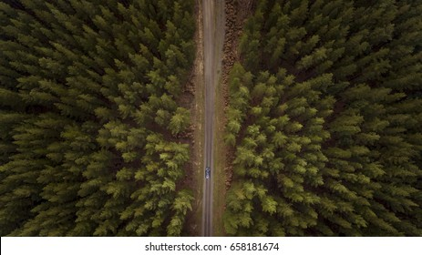 View from Above of Car Driving Down Road Between Forest
