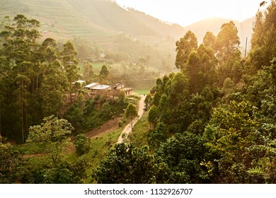 View from above forest village in Uganda, East Africa