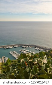 View from above of the harbor of Alassio, with docked boats and a plant of prickly pears in the foreground, Liguria, Italy