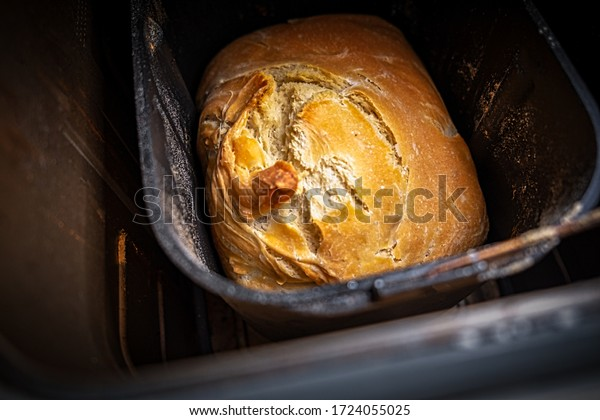 View from above inside a bread maker with a home made bread with crunchy top