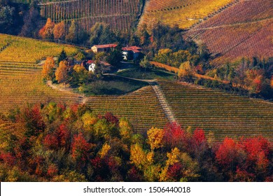 View from above on rural houses on the hill among colorful autumnal vineyards and trees in Piedmont, Northern Italy.
