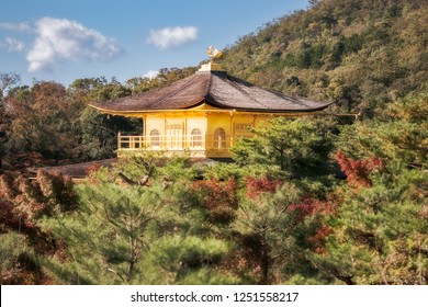 View from above of the top of the beautiful roofs of Golden Pavilion surrounded by forest almost close to autumn time in Kyoto, Japan.