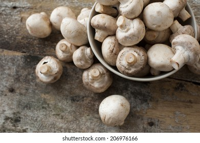 View from above of whole uncooked fresh white button or field mushrooms overflowing from a metal bowl onto old weathered rustic wooden planks