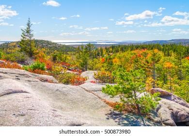 View of Acadia National Park during fall foliage season