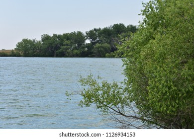View across bay on lake with distant trees (unfocused) and foreground bush (focus)