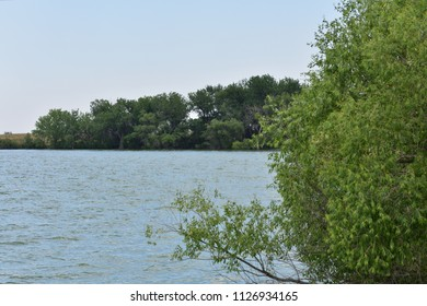 View across bay on lake with distant trees (focus) and foreground bush (unfocused)