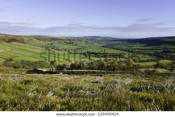 View across the dale in the midst of the North York Moors national Park near the village of Glaisdale,north Yorkshire, UK on a bright sunny morning.