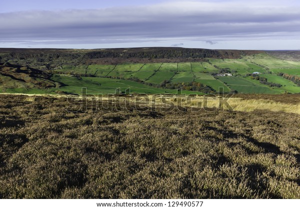 View across the dale near the village of Glaisdale in the heart of the North York Moors National Park, north Yorkshire, UK.