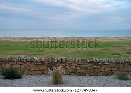 View across garden wall