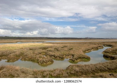 View across the Hadleigh Ray from Canvey Island, Essex, England