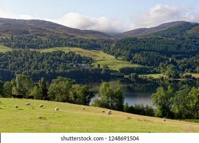 View across Loch Tummel towards Lick & Frenich, Perth & Kinross, Scotland