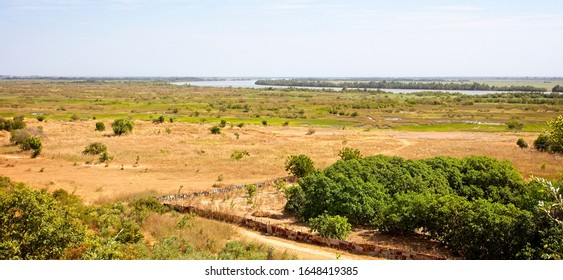 View across marshes close to the River Gambia, near Georgetown, Gambia.