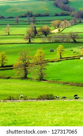 View across open fields near Pucklechurch in South Gloucestershire England.