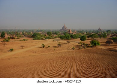 View across the Pagoda field with Trees in Bagan Myanmbar Burma