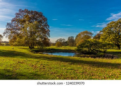 A view across the Parsons Pond near Bury St Edmund, Suffolk