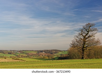 View across the River Stour valley in Suffolk,UK. An area made famous by artist John Constable.