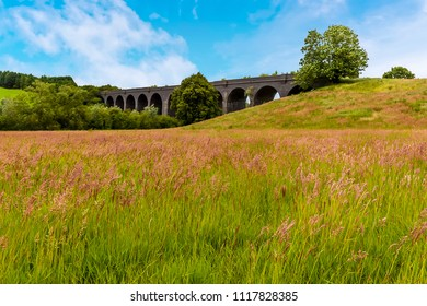 A view across summer meadows towards the derelict and abandoned viaduct near Catesby, Northamptonshire, UK