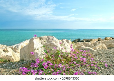 View to the Adriatic sea  from Bari city beach, Apulia region, Italy