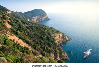 View of Aegean Sea and coastline of Thassos Island,Northern Greece at sunset