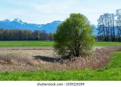 Aussicht von der Landlandschaft rund um Rosenheim, Bayern, Deutschland Richtung Alpen