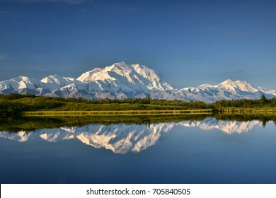 view of alaska's mount denali reflected in calm Reflecting Pond near Wonder Lake, with clear blue sky above