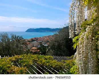 View of Alassio town and Ligurian sea from the garden of Villa della Pergola, an estate and hotel in Alassio, Savona province, Liguria region, Italy