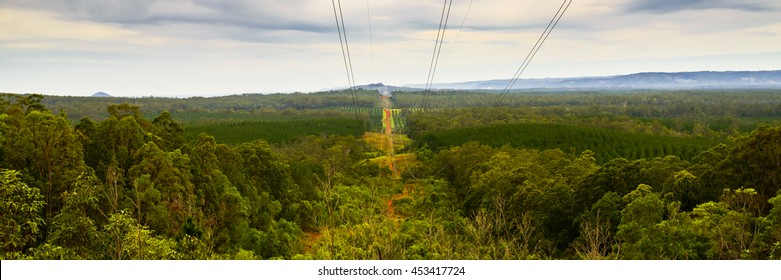 View along Powerlink's electricity transmission line and easement at the Glasshouse Mountains.