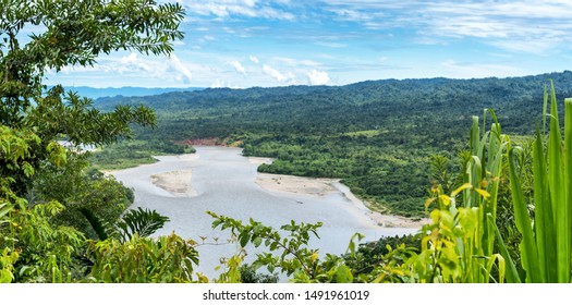 View of the Amazonia lush forest from Manu National Reserve Park