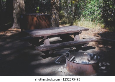 View of american camping place, campground, with table, fire pit, bench and bearproof food lockers in California, Mammoth Lakes, Inyo National Forest, United States