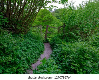 View of ancient stile on a footpath in the Lythes near St Mary's Church in Selborne, Hampshire, UK