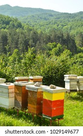 view of the apiary in a mountain monastery in Montenegro