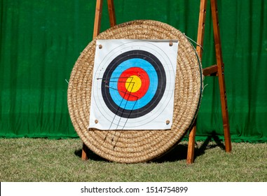 View of archery targets with arrows sticking in a competition.