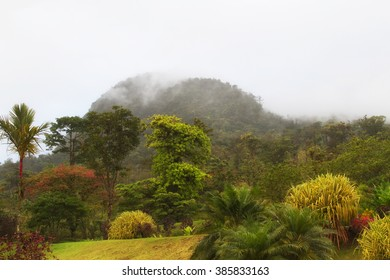 A view of the Arenal Volcano