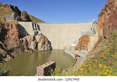 A view of Arizona's Roosevelt Dam framed by bright yellow wildflowers.
