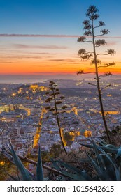 View of Athens and The Acropolis from Likavitos Hill and Aegean Sea visible on horizon at sunset, Athens, Greece, Europe 12 October 2017