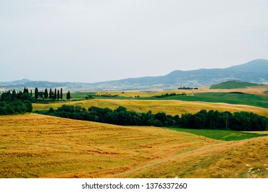 View of a autumn day in the Italian rural landscape. Unique sundown tuscany landscape in fall time. Wave hills, cypresses trees and cloudly sky. Tuscany, Italy, Europe