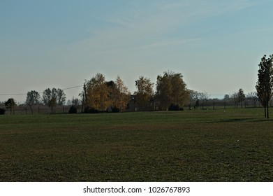 View at autumn empty field and house surrounded by trees