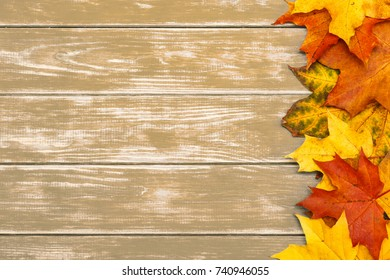 View of autumn leaves on the right side of the wooden brown background