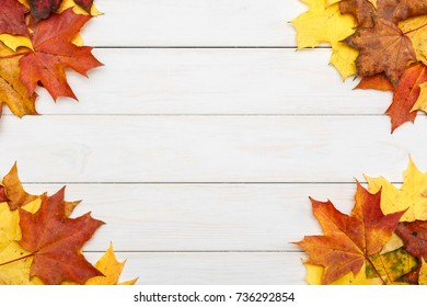 View of autumn maple leaves on white wooden background