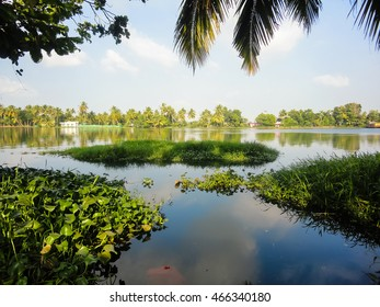 View at backwaters in the Alleppey, India