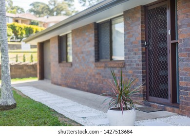 View of a backyard of a house featuring a stylish pot planted with an exotic plant, placed on a stone pavement