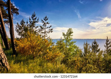 View from the Baltic Sea cliff on the Baltic Sea.