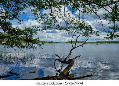 """View from the banks of river Havel near """"Kleines Hamphorn"""" to Berlin-Kladow and the """"Pfaueninsel"""" (""""Peacock Island"""")"""
