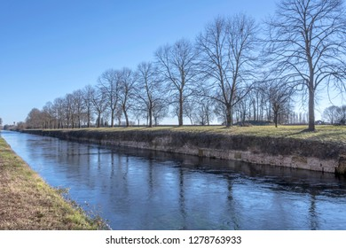 view of bare huge trees row on embankment of artificial historic canal, shot in winter bright light at Robecco sul Naviglio, Milan, Lombardy, Italy