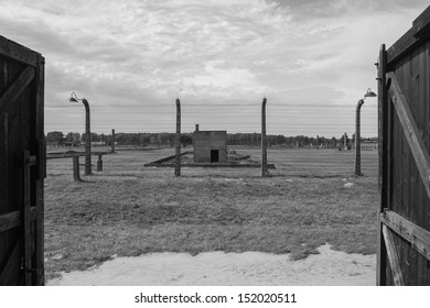 View from a barrack at Birkenau