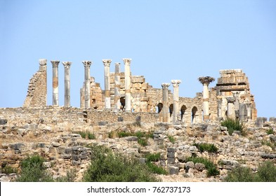View of the Basilica in Volubilis, Roman city near to Meknes, the ancient capital of Mauritania. Morocco, North Africa. UNESCO world heritage site