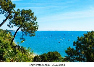 view of the basin of Arcachon in summer under the sun